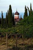 Christian shrine on Mount Athos — Stock Photo