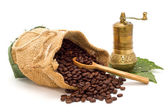 Coffee beans spilled out of the bag with wooden spoon, coffee grinder on green leaves isolated — Stock Photo