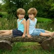 Adorable Little Twin Brothers Sitting on a Wooden Bench, Smiling and Looking at Each Other Near the Lake — Stock Photo #49955317