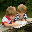 Adorable Little Twin Brothers Looking and Pointing at Very Interesting Picture in the Book Near the Beautiful Lake — Stock Photo #49955637