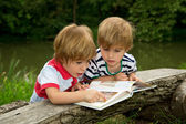 Adorable Little Twin Brothers Looking and Pointing at Very Interesting Picture in the Book Near the Beautiful Lake — Stock Photo