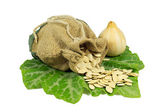 Pumpkin Seeds in Jute Bag and One Small Pumpkin on Green Leaf Isolated on White — Stock Photo
