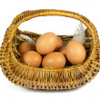 Brown Chicken Eggs and Pen in a Wicker Basket Isolated on White — Stock Photo #50859877