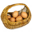 Brown Chicken Eggs and Pen in a Wicker Basket Isolated on White — Stock Photo #50859887