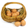 Brown Chicken Eggs and Pen in a Wicker Basket Isolated on White — Stock Photo #50859903