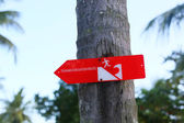 Tsunami warning sign on the palm in Indonesia — Photo