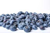 Heap blaubeeren isoliert auf weißem hintergrund — Stockfoto