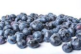 Mavi berry — Stok fotoğraf