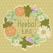 Herbal tea card — Stock Vector