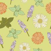 Herbal seamless pattern — Stock Vector