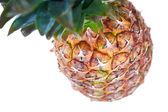 Ananas isolato — Foto Stock