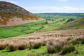 Mosedale Valley — Stock Photo