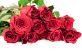 Twelve red roses — Foto Stock