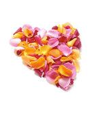 バラの花びらのハート — ストック写真