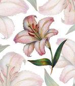 Lilies of antiquity — Zdjęcie stockowe