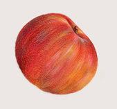 Apple — 图库照片