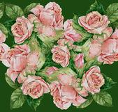 Illustration de roses — Photo