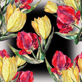 Red and yellow tulips — Zdjęcie stockowe