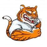 Tiger mascot, team logo — Stock Vector #43417639