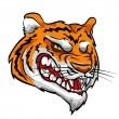 Angry Tiger mascot — Stock Vector #43417665