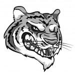 Angry Tiger mascot — Stock Vector #43417671