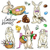 Easter Bunnies Collection. — Stock Vector