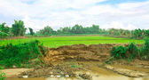 In the village and section of soil. Erosion due to water erosion — Stock Photo
