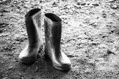 Eski çizmeler — Stok fotoğraf