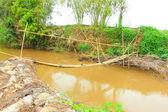 Puente de bambú — Foto de Stock
