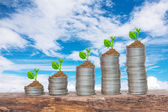 Trees growing in a sequence of germination on piles of coins — Stock Photo