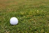 Golf course — ストック写真
