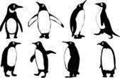 Pinguine. — Stockvektor