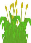 Grass Verge — Stock Vector