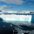 Antarctic icebergs — Stock Photo #43617285