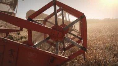 Harvest machines close up — Stock Video