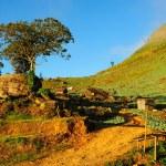 Landscape of phutabberk — Stock Photo