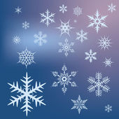 Snow stars — Stock Vector