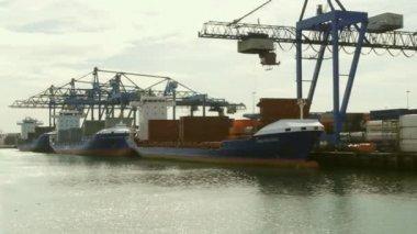 Industrial Harbour — Stock Video
