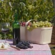 Wine Grape and Cheese — Stock Video #45263309