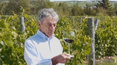 Wine Grower 01 — Stock Video
