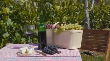 Wine Grape and Cheese — Stock Video