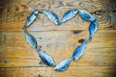 Heart from fishes — Foto de Stock