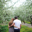 Walk of lovers on a garden — Stock Photo