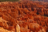 Vista of hoodoos in Bryce Canyon National Park in Utah — Foto de Stock