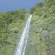 The magnificent 400' Waimoku Falls waterfall in Maui — Stock Video