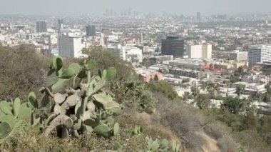 A view overlooking downtown Los Angeles from the famous Hollywood Hills — Stock Video