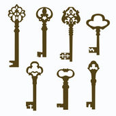 Set old carved door keys — Vetorial Stock