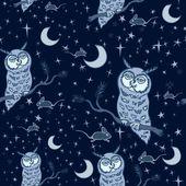 Owl birds — Stock Photo