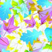 Plants leaves — Stock Photo