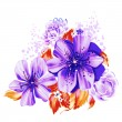 Color illustration of flowers in watercolor paintings — Stock Photo